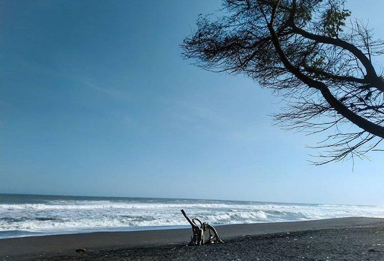 Keunikan Pantai Goa Cemara Jogja Yang Menjadi Daya Tarik Pengunjung